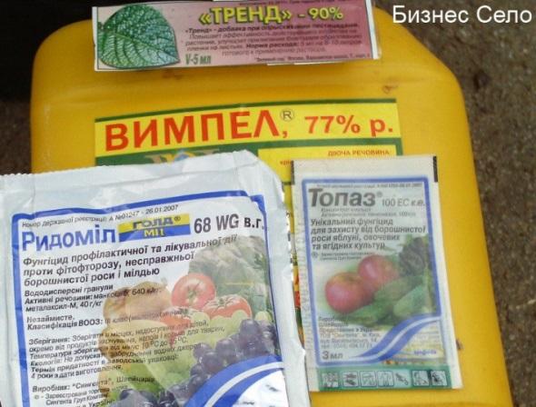 препараты для обработки винограда